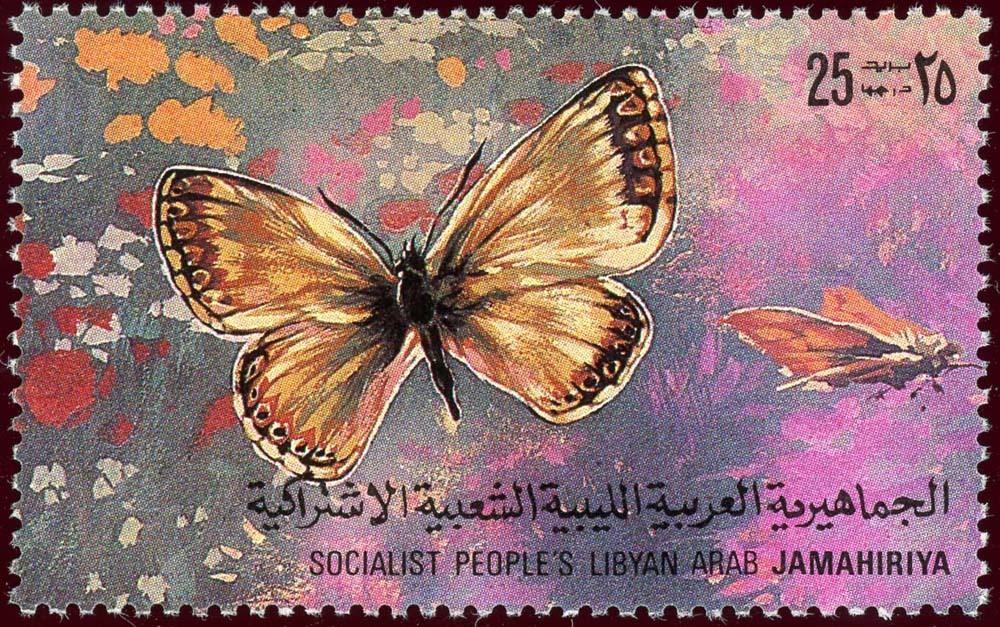 Libya:1981-15