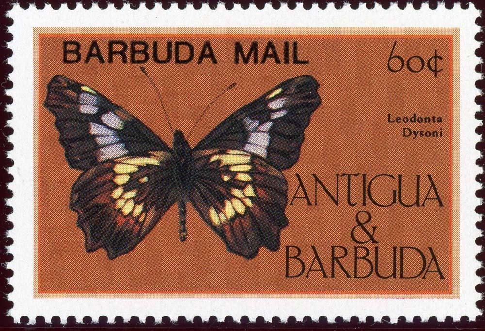 Barbuda:1985-2