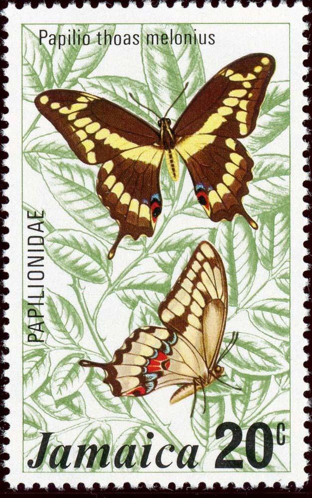 Jamaica:1975-2