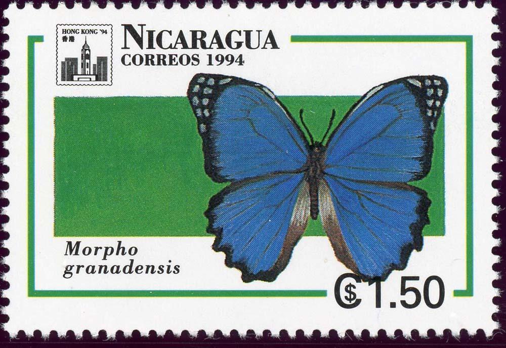 Nicaragua:1994-16
