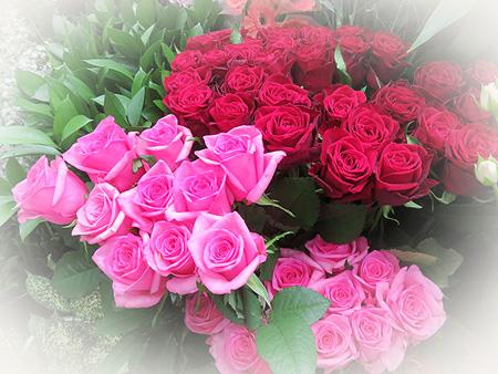1030薔薇1
