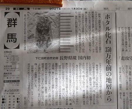 0131ホタル化石