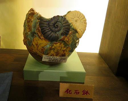 0306アンモナイトの鉢カバ-