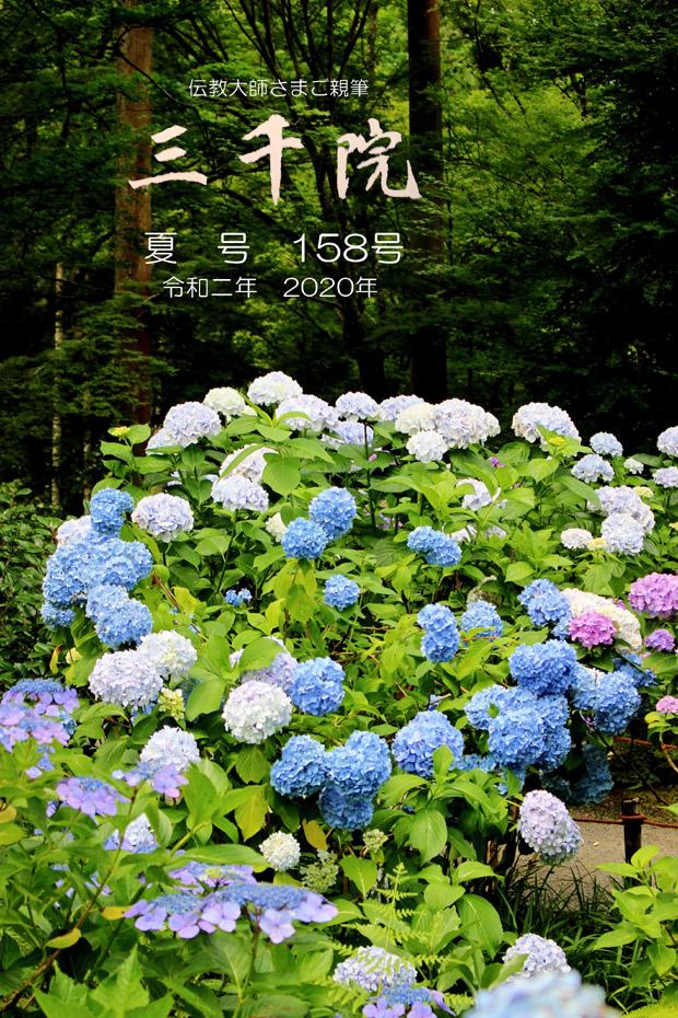 620-IMG_9266HG_NEW-タイトル03G