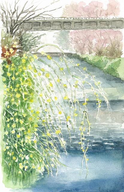 s-春の吉敷川