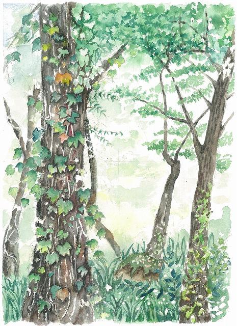 s-古い木とアイビー