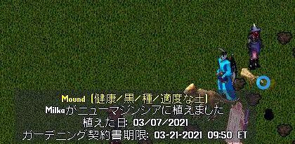 4_20210308174433926.jpg