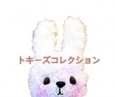 Tokey(トキー)