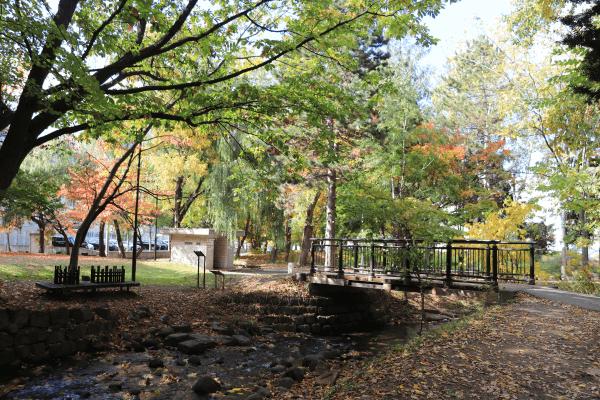 2020-10-22精進川河畔公園3