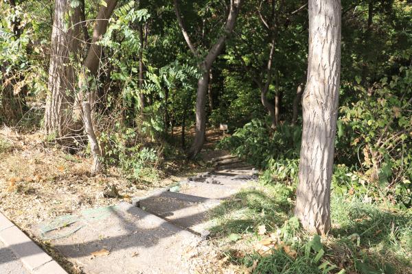 2020-10-22精進川河畔公園1
