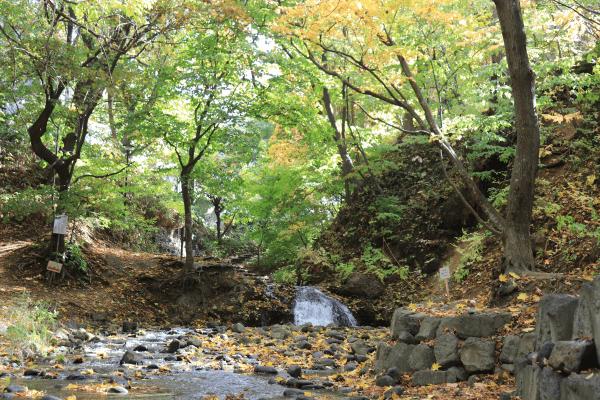 2020-10-22精進川河畔公園7
