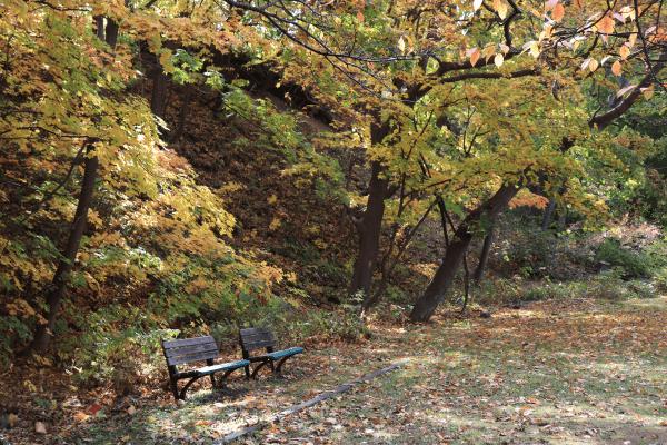 2020-10-22精進川河畔公園4