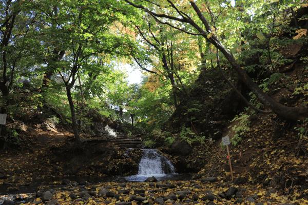 2020-10-22精進川河畔公園12