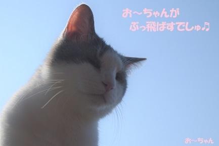 ryo (5)