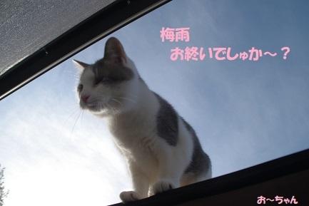 ryo (1)