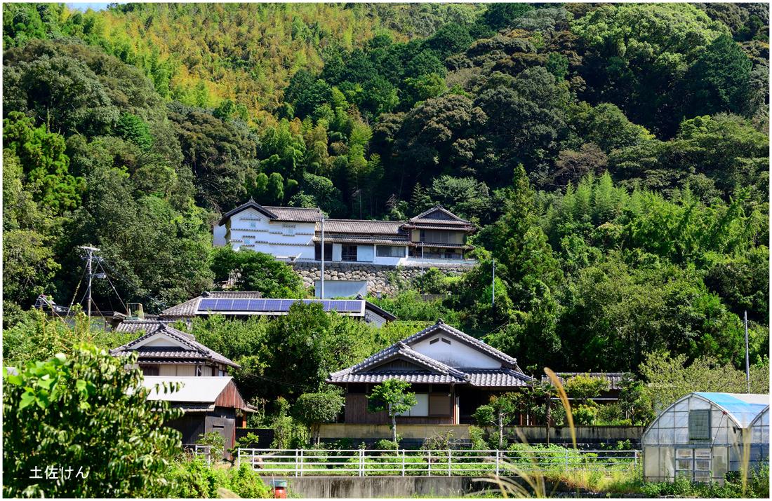 山の中の家