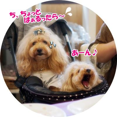あきちゃんカフェ7