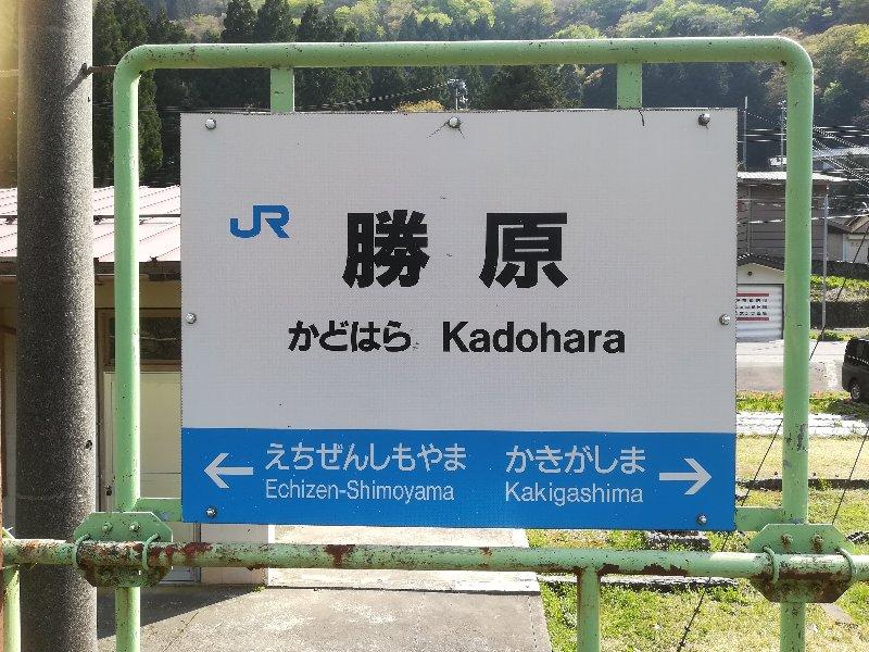 hanamomo-kadohara-011.jpg