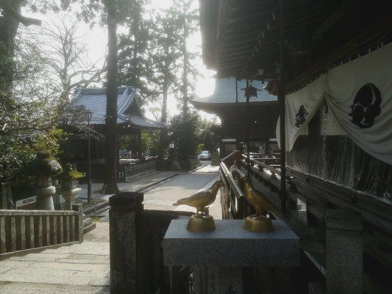 himurehachiman3-oumihachiman-023.jpg