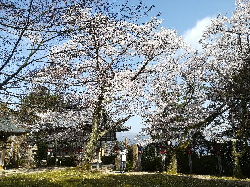 jouguujnjya2-tsuruga-078.jpg