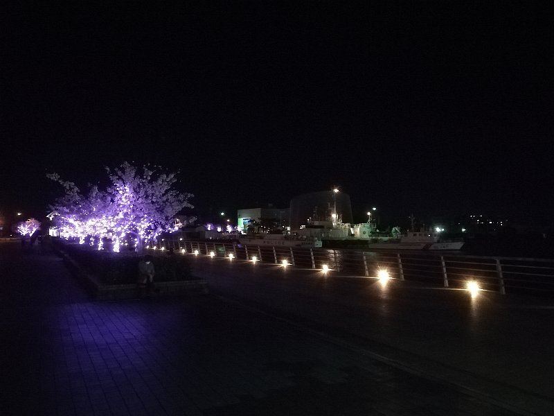 kanakasak-pm-tsuruga-009.jpg