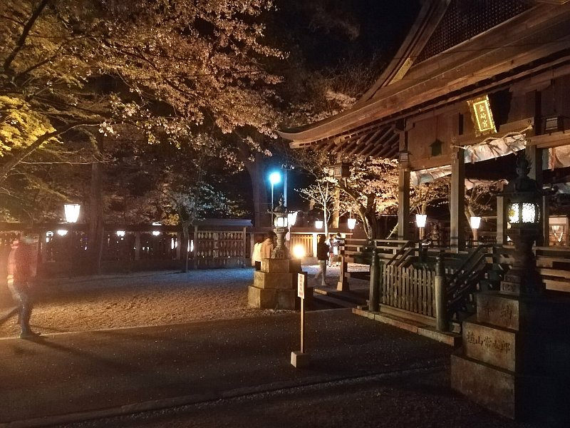 kanakasakigu7-tsuruga-018.jpg