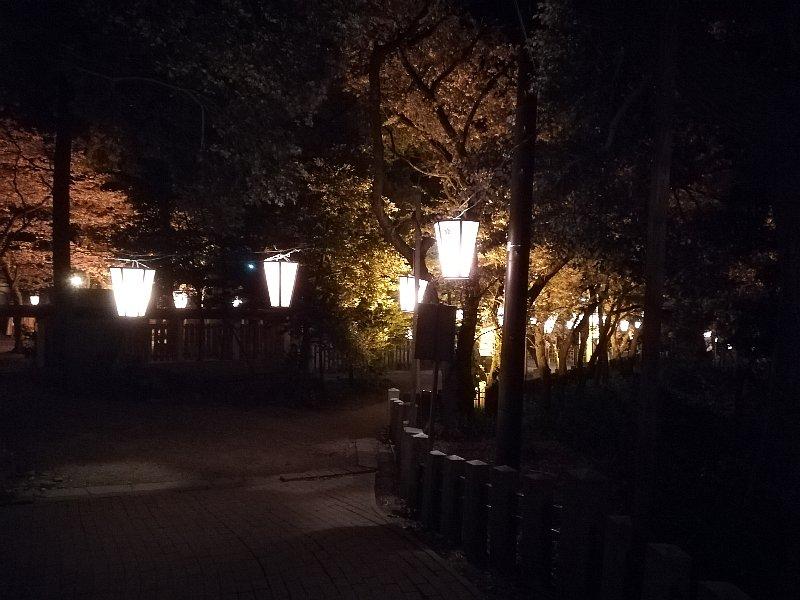 kanakasakigu7-tsuruga-035.jpg