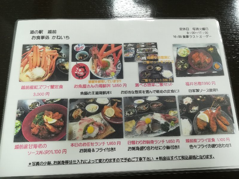 kaneichi-echizen-010.jpg