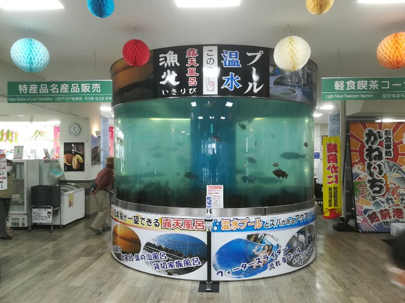 kaneichi-echizen-023.jpg