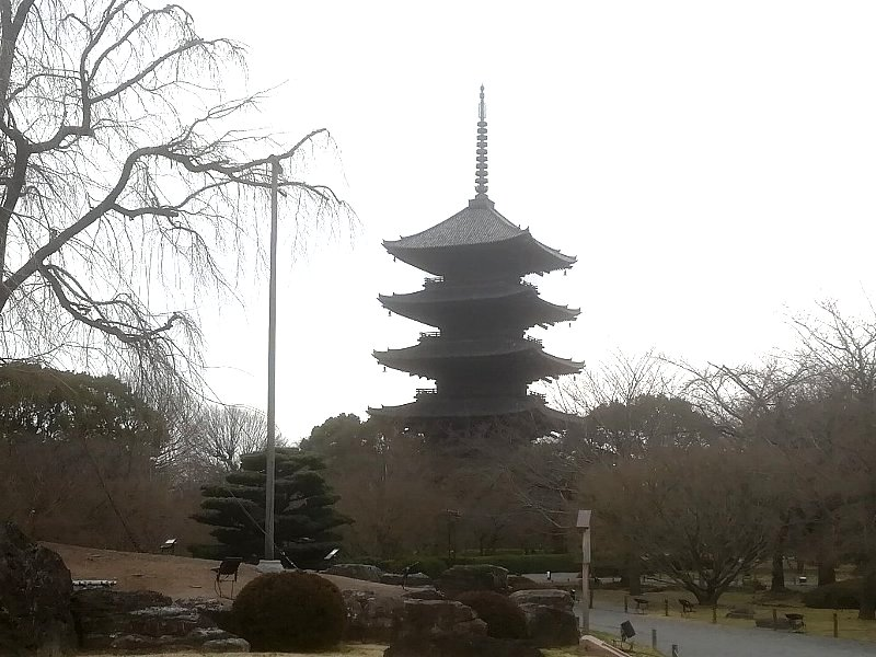 tohji-kyoto-074.jpg