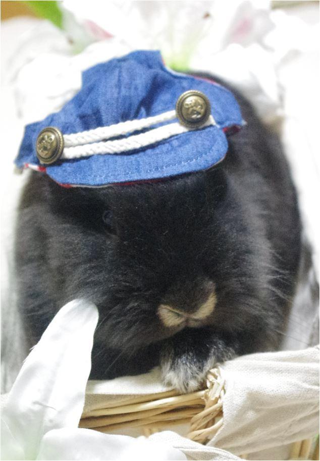 バスケット 帽子 デニム