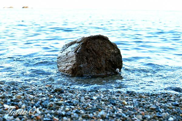 波間のt流木mini
