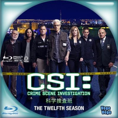 CSI 科学捜査班 シーズン12 B