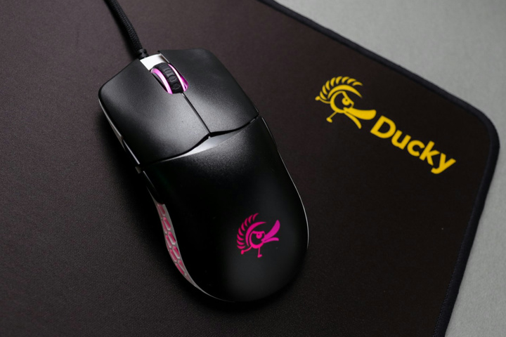 Ducky_Feather_New_Color_01.jpg