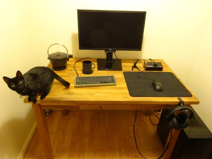 PC_Desk_Cat_12.jpg