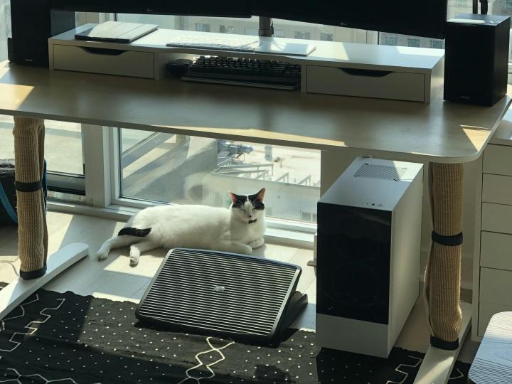 PC_Desk_Cat_13.jpg