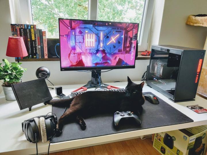 PC_Desk_Cat_17.jpg