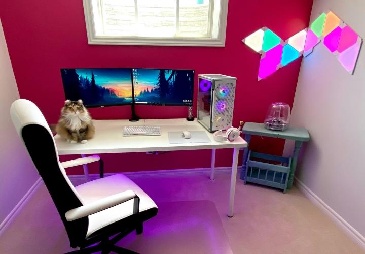 PC_Desk_Cat_18.jpg