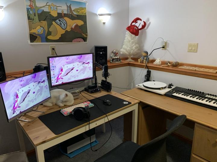PC_Desk_Cat_19.jpg