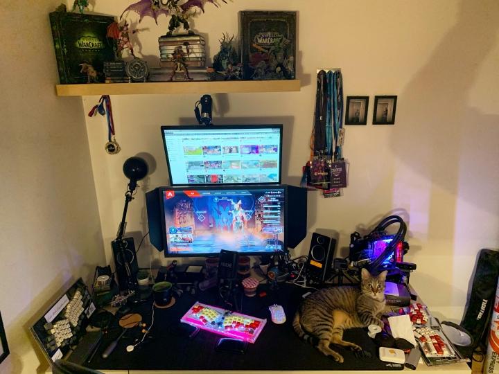 PC_Desk_Cat_27.jpg
