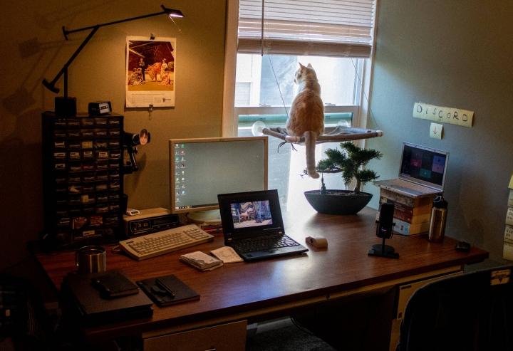 PC_Desk_Cat_29.jpg