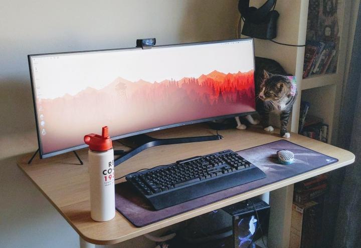 PC_Desk_Cat_32.jpg
