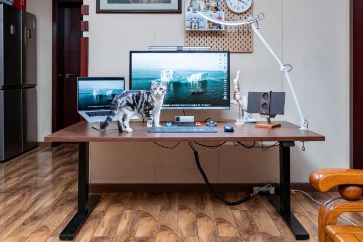 PC_Desk_Cat_36.jpg