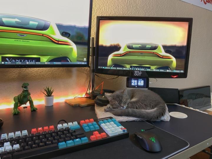 PC_Desk_Cat_39.jpg