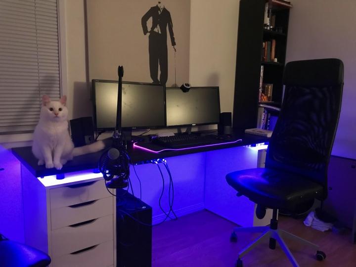 PC_Desk_Cat_49.jpg