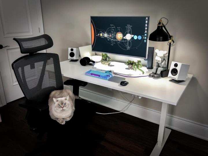 PC_Desk_Cat_51.jpg