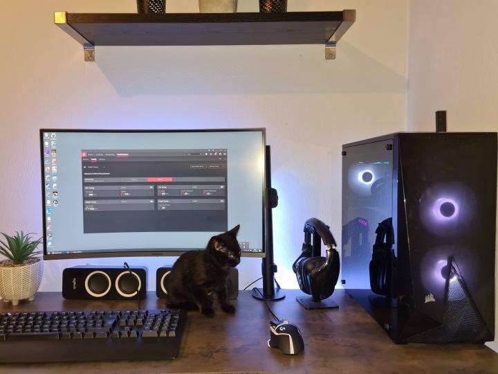 PC_Desk_Cat_54.jpg