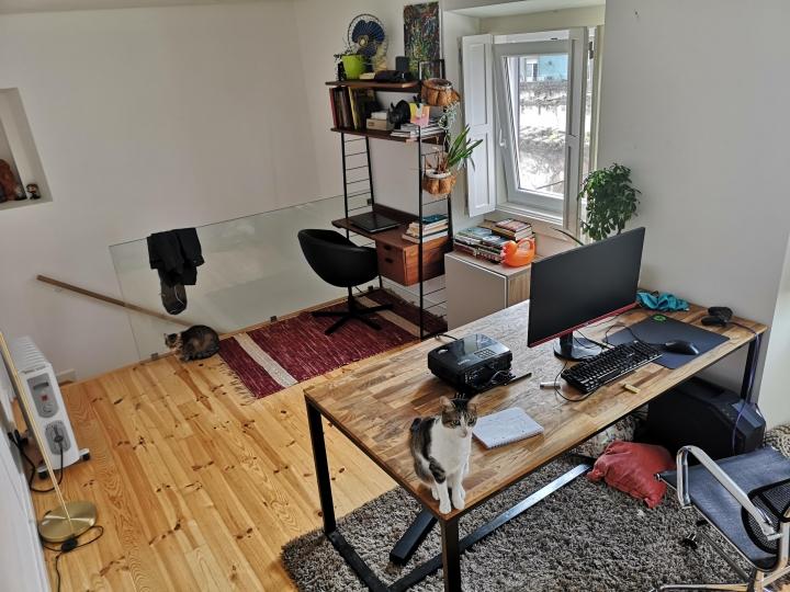 PC_Desk_Cat_56.jpg
