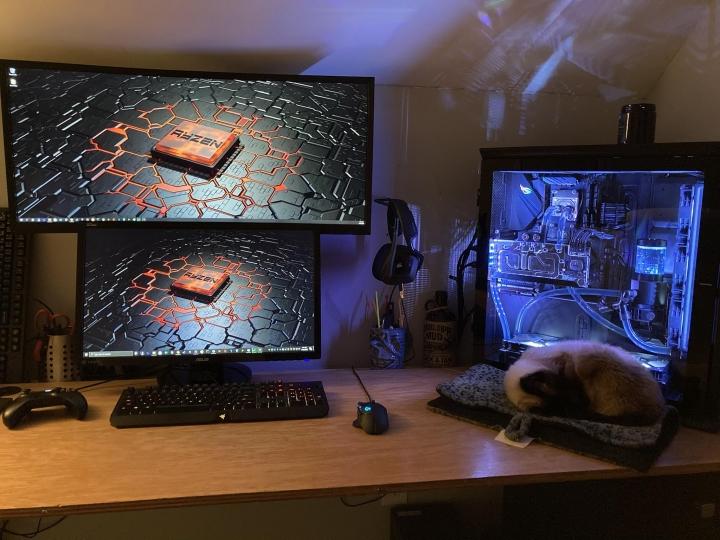 PC_Desk_Cat_57.jpg