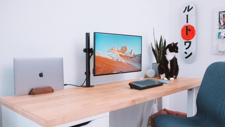 PC_Desk_Cat_70.jpg